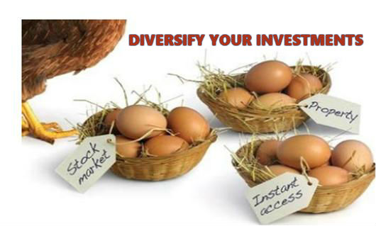 diversify your investment