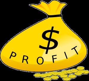 profit dividend